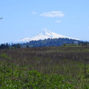 Butte Hike 4-29-19